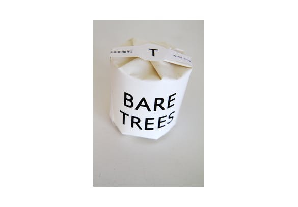 Fall is Here, and Our Bare Trees Candle is Oh So Cozy!