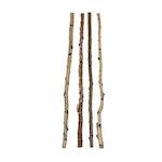 """59""""L Wood Birch Branch"""