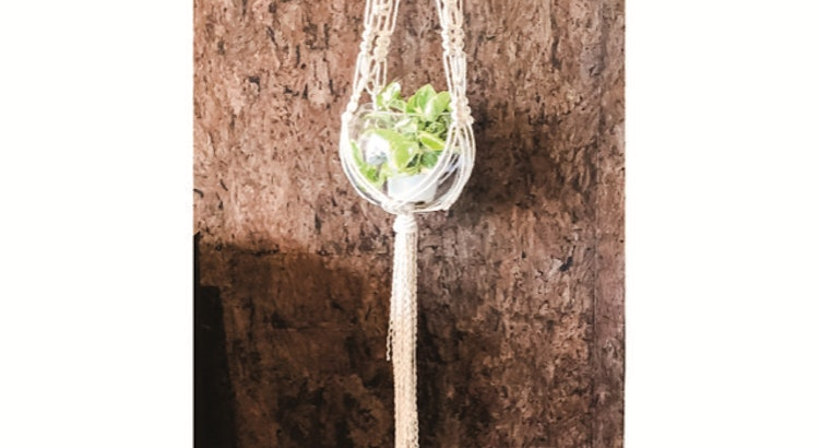 Introducing Our Macrame Plant Hanging Workshop With Gina Rowell