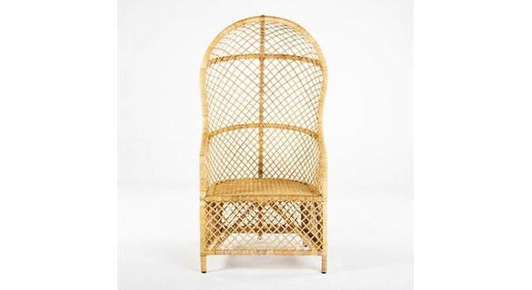 Wow! Fall in Love with the Rattan Peacock Chair!