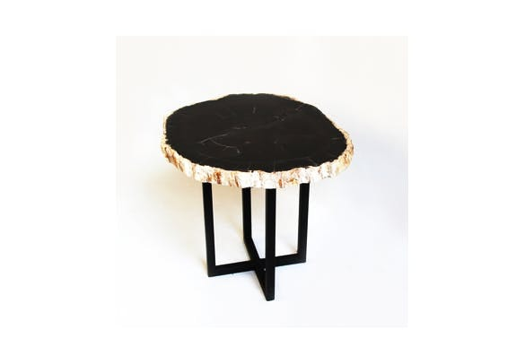 Our Petrified Wood Side Table Is Stunning!