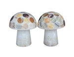 Pair of Multi-Coloured Onyx Mushroom Lamps