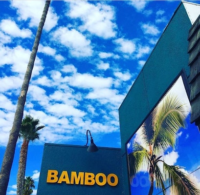 Visit Bamboo and Beyond